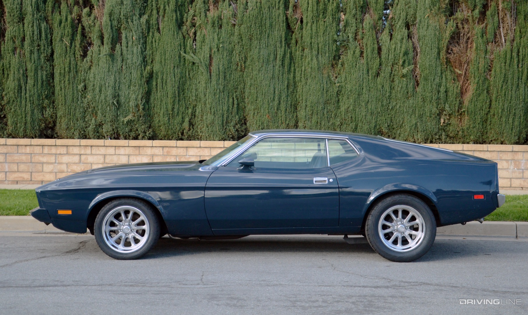 Mustang Money On Line