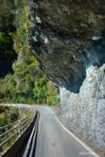 NZ-one-lane-road