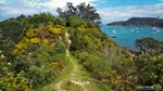 Waiheke-Island-New-Zealand